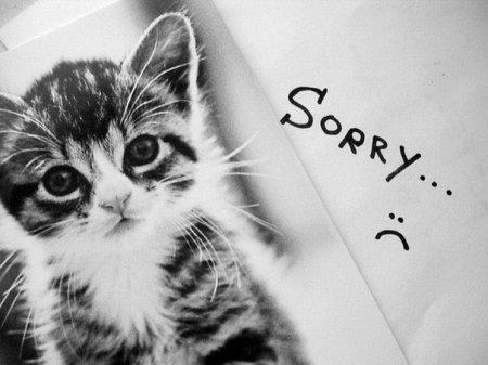 Извинение перед подругой